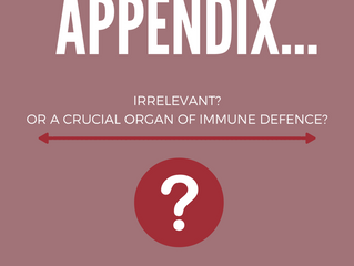 The Appendix – Irrelevant? Or a critical organ of immune defence?