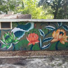 Lotus Family