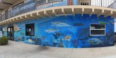 Local Ocean Life Mural for Two Jerks Sea