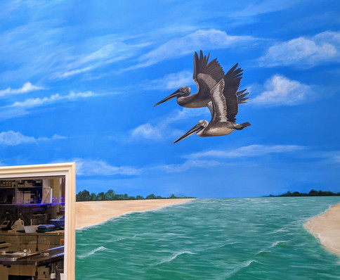 Pelican Mural for Marine Science Center