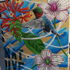 Native Plants Mural