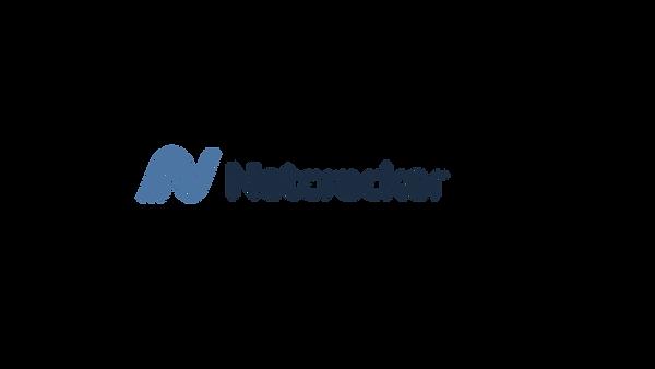 Logo_Netcracker_Horiz_NOTAGS_CMYK (1)-2.