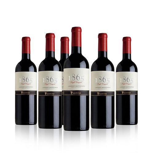 6 o 3 Pack Vino Premium 1865 Viña San Pedro, Varias Cepas 750cc