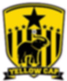 yellowcap logo.jpg