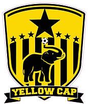 yellowcap logo.jpg