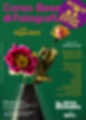 fiori, fotografia