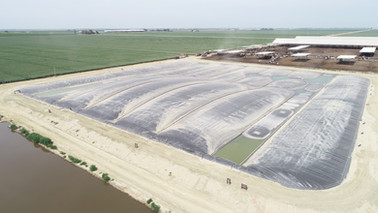Cornerstone Dairy  - Pixley, CA