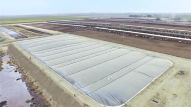 K&M Visser Dairy - Pixley, CA