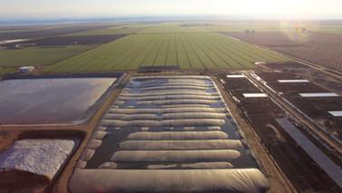 Van Beek Brothers Dairy - Tipton, CA