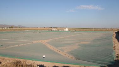 Stotz Farms Southern Dairy Digester - Buckeye, AZ