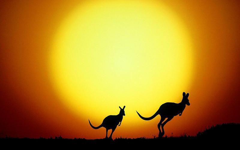 sol australiano