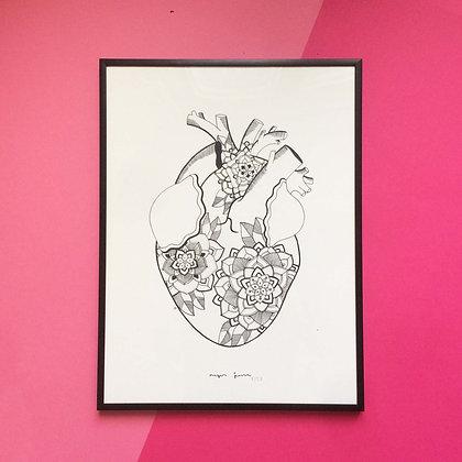 Lámina - Corazón