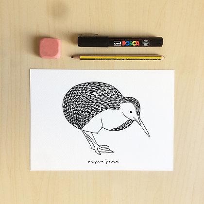 K de Kiwi