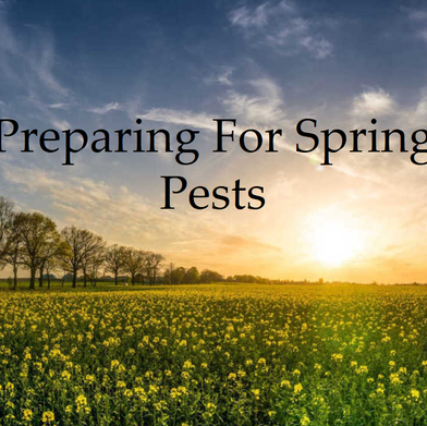 Preparing For Spring Pests