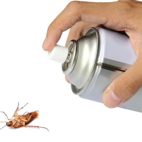 Why DIY Pest Control Rarely Works