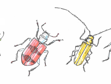 Should you estimate your bugs in Agile projects? | David Tzemach