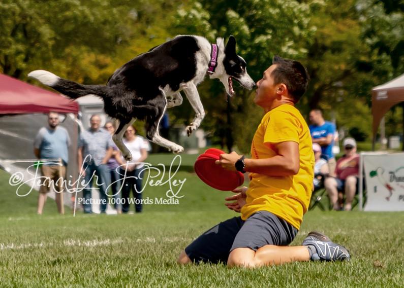 Dog&Man.jpg