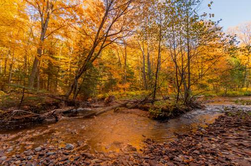 Little Garlic River, Marquette MI USA