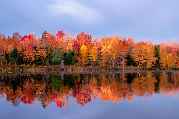 Horseshoe Lake, MI USA