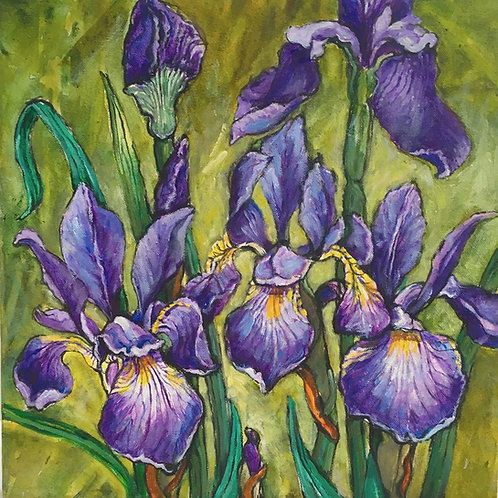Irises by Patricia Clements