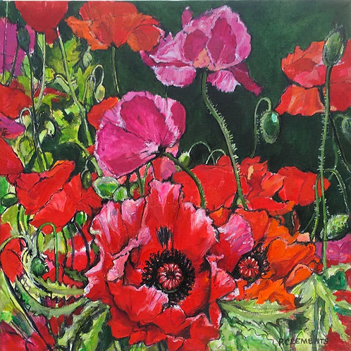 Poppies by Patricia Clements