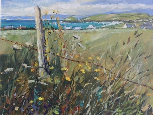 View of Trevose Head by Mary Pelham