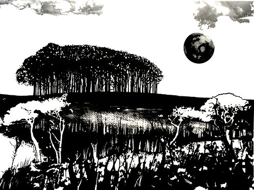 Seeking New Landscapes 2,1 colour screen print no 5 by Ruth Mcdonald