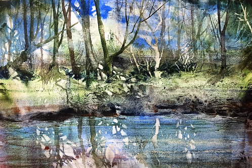 Ruskins Pond by Kate Bentley