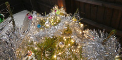 2016_11-29_Xmas_Tree-Decorating6
