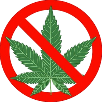 Cannabis-Not-Allowed_edited.png