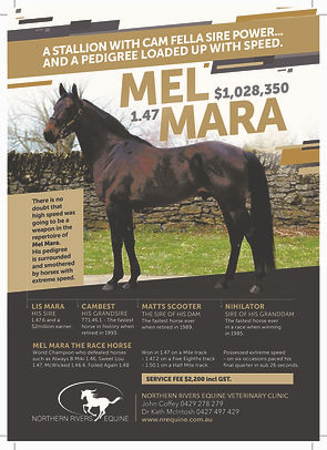 Mel Mara SA Magazine FA Print (2)-page-0