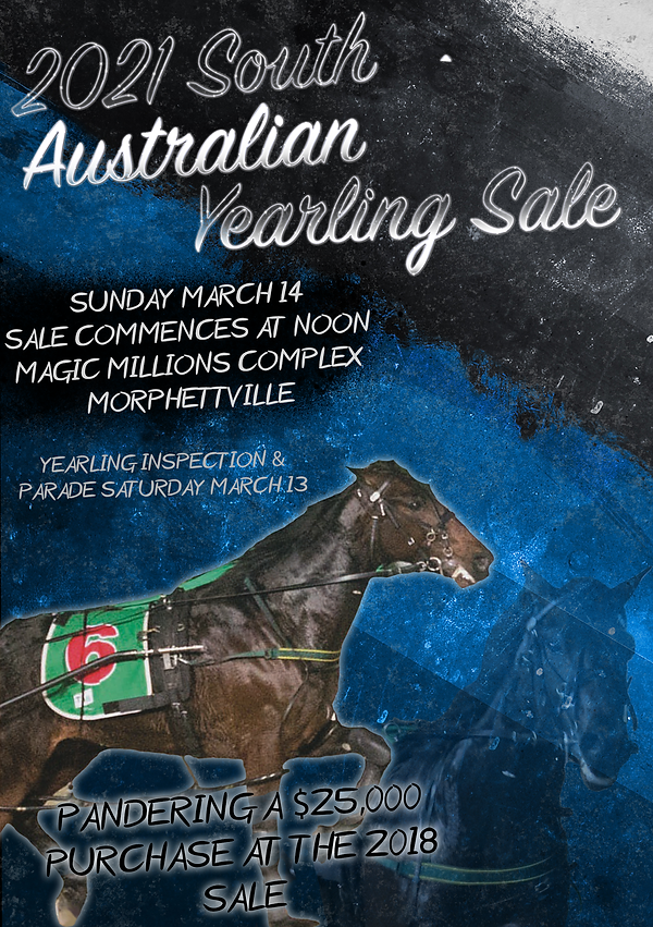 Yearling sale cover.png