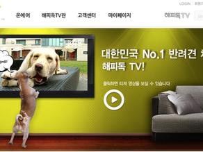 온비디오 사례연구 - 해피독TV