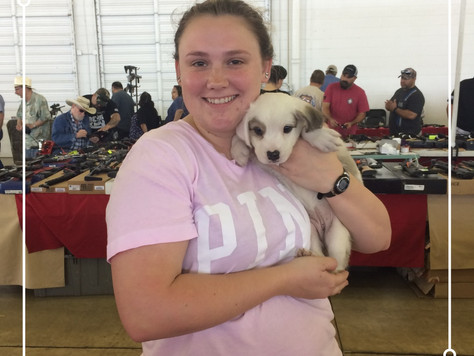 Awesome Adoption Weekend at Dallas Market Hall