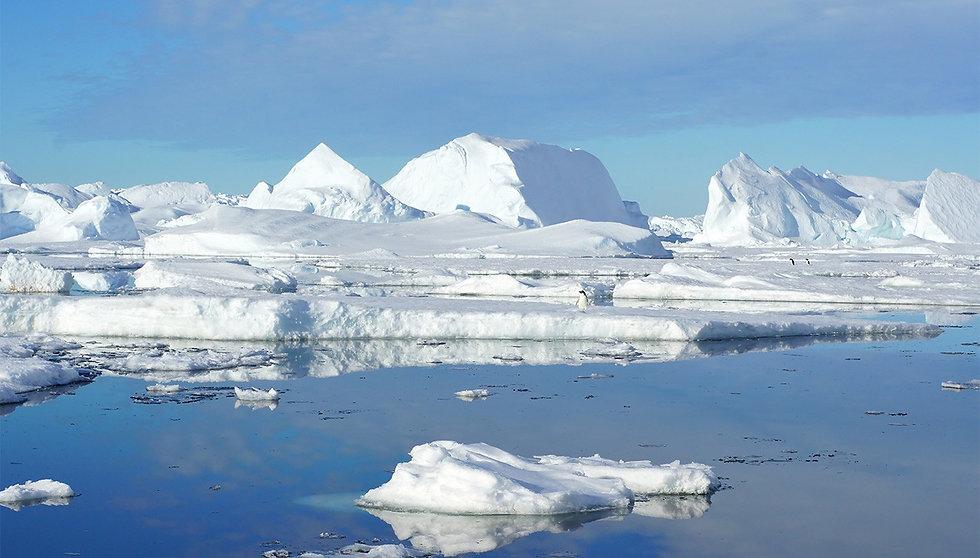 antartique.jpg