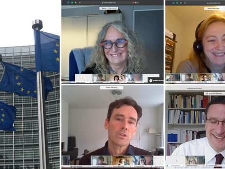 LouvainMUN virtual visit to the European Commission