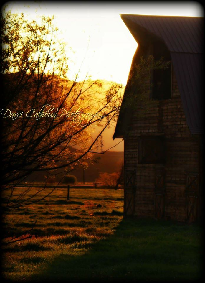 photo by Darci Calhoun