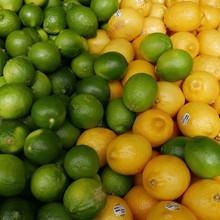 Citrus for General Garnishing
