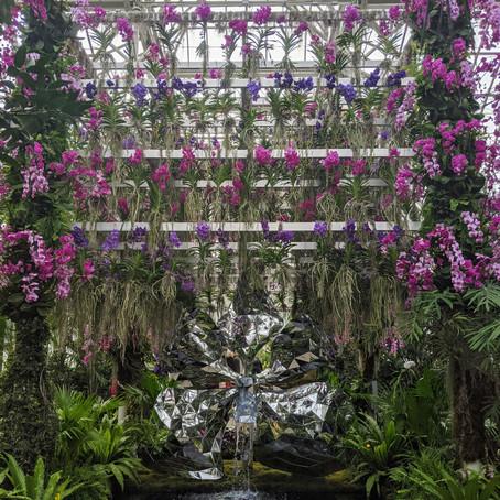 The Best Virtual Garden Tours for Quarantine