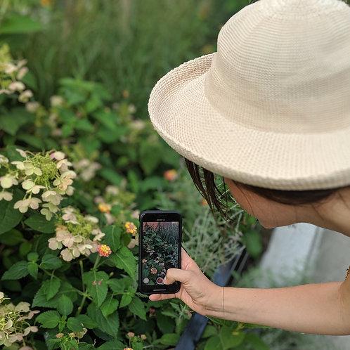 Hudson Valley Flower Farm