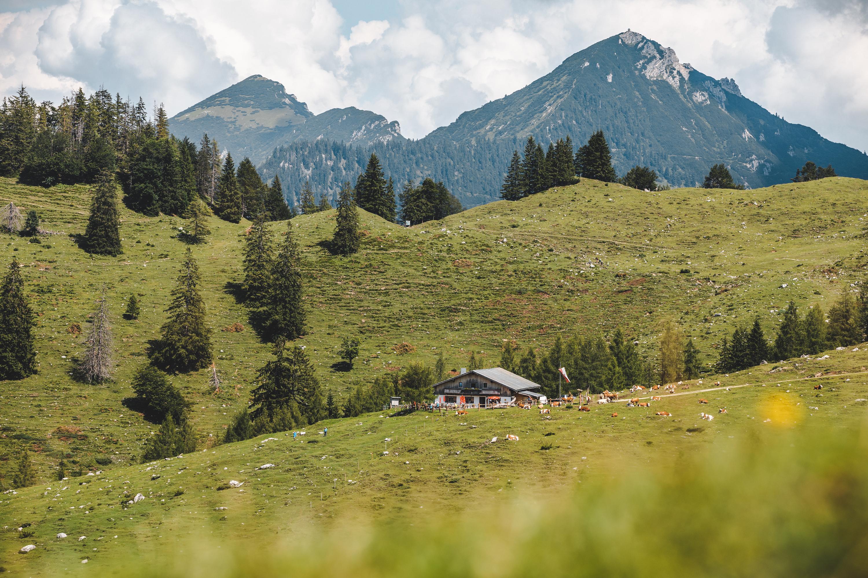 Naturerlebnis_Kaisergebirge_Wanderweg_St