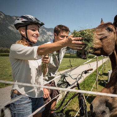 radfahren-pferde-langkampfen©lolin.jpg