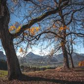 herbst-kufsteinerland-copyright-vanmey-photograpy