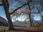 herbst-kufsteinerland-copyright-vanmey_photography