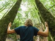 naturesponse-fuehrung_wasserfall-nikolau