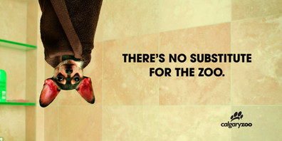 2006 . Calgary Zoo . Trigger Communications . Art Direction: Tod Blevins