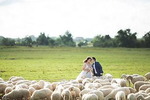 Hochzeit im Freien Fotografie