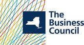 bcnys.org logo.png