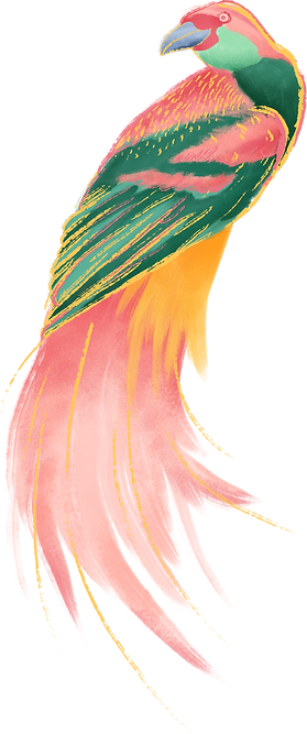 pájaro colorido