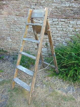 Rustic Step Ladder